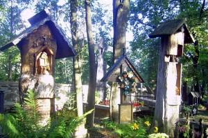 Poznajemy Tatrzański Park Narodowy – wycieczka 3 dniowa 3