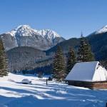 Zimowisko 6 dniowe wPoroninie - styczeń 2020 12