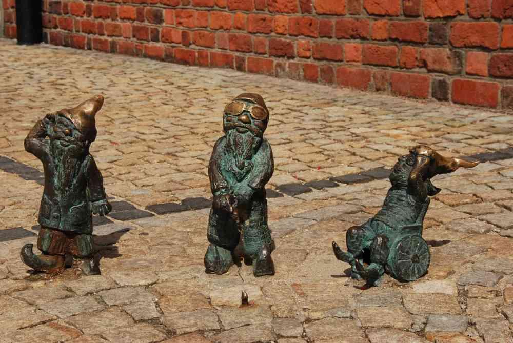 Pakiet 2+3 Wrocław dla małych idużych